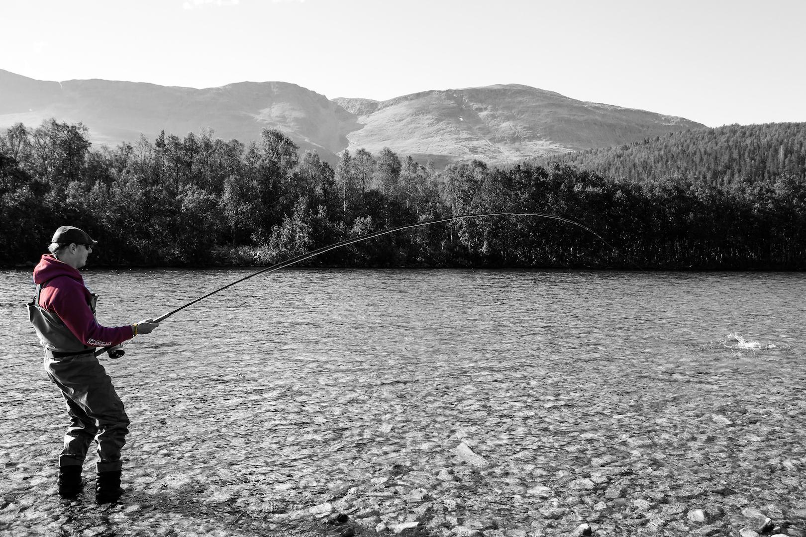 Pure Salmon Fishing